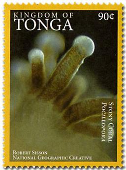 n° 1468A - Timbre TONGA Poste