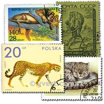FELINES: envelope of 100 stamps