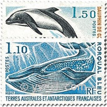 n.o 64 / 65 -  Sello Tierras Australes y Antárticas Francesas Correos
